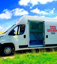 dog-grooming-cork-van-img-1