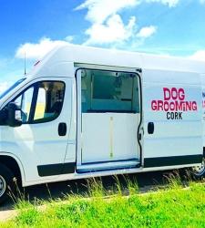 dog-grooming-cork-van-img-2