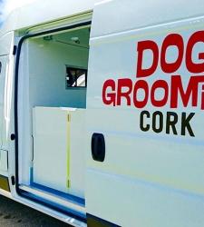 dog-grooming-cork-van-img-8